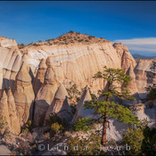 Tent Rocks Overview