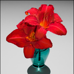 Blue Vase Red Lilies